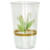 Bare RPET Cold Cups, Leaf Design, 20 oz, 50/Pack, 20 Packs/Carton