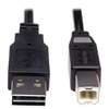 Tripp Lite Reversible USB 2.0 Cable, Reversible A to B M/M, 6 ft