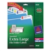 X-Large 1/3-Cut File Folder Labels w/TrueBlock, 15/16 x 3 7/16, WE/ASST, 450/PK