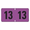 Smead Jeter-Compatible Year 2013 Labels, 3/4 x 1-1/2, Purple/Black, 500/Roll