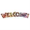 Carson-Dellosa Publishing Photographic Welcome Bulletin Board Set, 8 Pieces/Kit