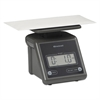 Brecknell Electronic Postal Scale, 7 lb Capacity, 5 1/2 x 5 1/5 Platform, Gray