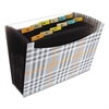 "C-Line 13-Pocket Expanding File, 9"" Exp, Letter, Plaid"