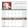 House of Doolittle Recycled Puppies Monthly Wall Calendar, 12 x 12, 2017