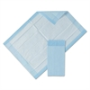 Protection Plus Disposable Underpads, 17 x 24, Blue/White, 25/Bag, 12 Bag/Ctn
