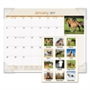 AT-A-GLANCE Horses Monthly Desk Pad, 22 x 17, 2017
