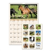 AT-A-GLANCE Horses Monthly Wall Calendar, 12 x 17, 2017