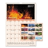 AT-A-GLANCE Mother Nature Monthly Wall Calendar, 12 x 17, 2017