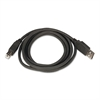 Innovera 2.0 USB/Peripheral Cable, AM/AM, 6 ft, Black