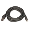 Innovera 2.0 USB/Peripheral Cable, AM/BM, 10 ft, Black