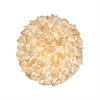 Pomeroy Hermit Shell Decorative Sphere In Tan, Tan