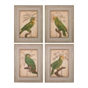Sterling Parrot And Palm I, II, III, IV - Fine Art Giclee Under Glass