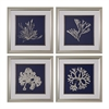 Sterling Seaweed On Navy I, II, III, IV - Fine Art Giclee Under Glass