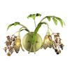 Huarco 2 Light Wall Sconce In Seashell And Green