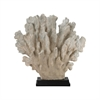 Cretaceous Coral Sculpture