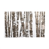 Sterling Kalypto Wall Decor Natural Birch,White