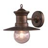 ELK lighting Maritime 1 Light Outdoor Wall Sconce In Hazlenut Bronze