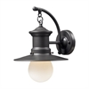 ELK lighting Maritime 1 Light Outdoor Wall Sconce In Graphite