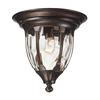 Glendale 1 Light Outdoor Flushmount In Regal Bronze
