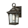 Loringdale 1 Light Outdoor Wall Sconce In Hazelnut Bronze With Clear Seedy Glass