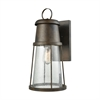 Crowley 1 Light Outdoor Wall Sconce In Hazelnut Bronze With Clear Seedy Glass