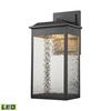 ELK lighting Newcastle LED Outdoor Wall Sconce In Matte Black