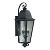 Forged Brookridge 4 Light Outdoor Sconce In Charcoal