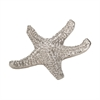 Lazy Susan Silver Sea Star - Sm
