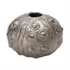Silver Sea Urchin - Lg
