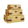 Pomeroy Telluride Set of 3 Boxes, Mango Wood,Montana Rustic