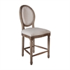 Allcott Counter Stool