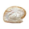 Lazy Susan Pearl Shell Plate