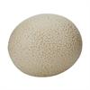 Tofu Ostrich Egg