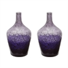 Lazy Susan Plum Ombre Bottle - Set Of 2