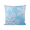 Pomeroy Malibu Snow Pillow 20X20-Inch, Frosted Capri