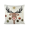 Donner 20x20 Pillow, Snow,Coco,Holiday Hues