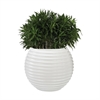 Dimond Home Jaya Bamboo Tuft Planter Gloss White