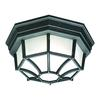 Outdoor Essentials Ceiling Lamp Black 1X