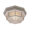 Outdoor Essentials Ceiling Lamp