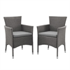 Walker Edison angelo:HOME Rattan Patio Dining Chair (Set of 2) - Grey