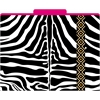 Barker Creek Africa - Zebra File Folders Set of 12