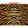 Barker Creek Africa - Tiger File Folders Set of 12