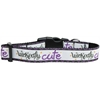 Mirage Pet Products Wickedly Cute Nylon Dog Collar Medium