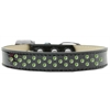 Mirage Pet Products Sprinkles Ice Cream Dog Collar Lime Green Crystals Size 16 Black