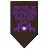 Mirage Pet Products Smallest Things Screen Print Bandana Brown Small