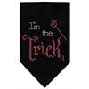Mirage Pet Products I'm the Trick Rhinestone Bandana Black Large