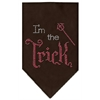 Mirage Pet Products I'm the Trick Rhinestone Bandana Brown Large