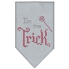 Mirage Pet Products I'm the Trick Rhinestone Bandana Grey Small
