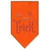 Mirage Pet Products I'm the Trick Rhinestone Bandana Orange Small