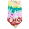 Mirage Pet Products Bully Screen Print Bandana Tie Dye